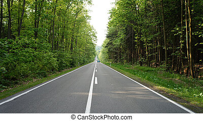 Two-lane road - Long, straight road through a forest in the...