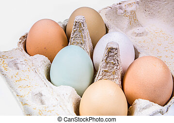 six eggs in different colors and sizes in an egg carton -...