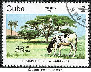 postage stamp - CUBA - CIRCA 1984: A stamp printed in Cuba...