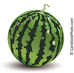 Watermelon - 3d watermelon with water drop isolate in white...