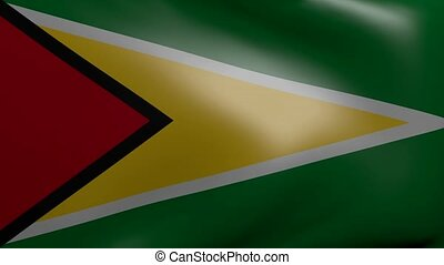 guyana strong wind flag