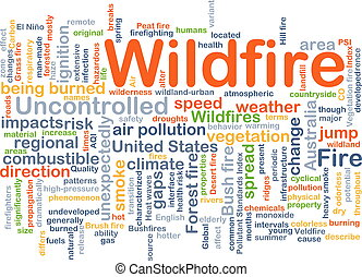 Wildfire background concept - Background concept wordcloud...