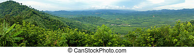 tropical forest - Panorama of tropical forest on Mountain...