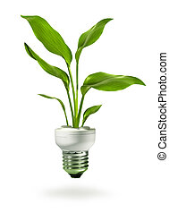 Green growth from energy saving eco lamp - Green plant...