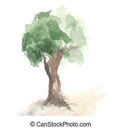 Old watercolor tree with green foliage on brown trunk - Old...