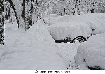 Cars are filled up by snow on a parking