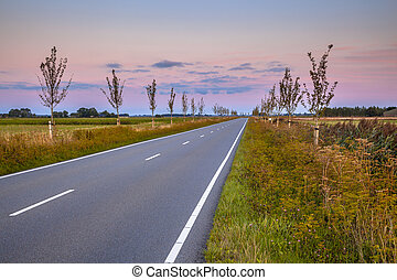 Road with vanishing point in dutch countryside during...