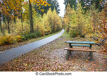 Autumn Picknick - Picknick Bench in a Yellow Golden Autumnal...