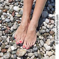 legs on pebble