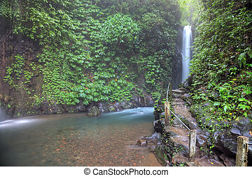 Git-Git tropical waterfall, Bali, Indonesia. HDR...