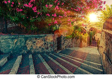 Cannes Walking Route - Beautiful Full of Flowers and History...