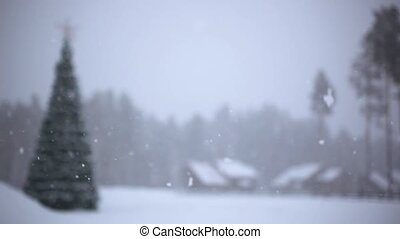 Winter trees in mountains covered with fresh snow during...