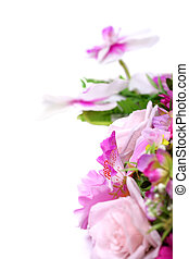 White with purple orchid and decorative leafs isolated on...