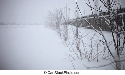 Snowy trees and fence along winter road covered in thick...