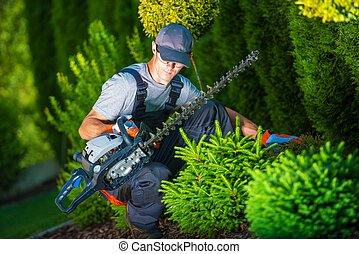 Trimming Work in a Garden - Trimming Works in a Garden....