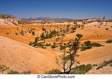 Plaines of Bryce Canyon