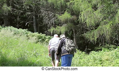 Senior tourist couple hiking in the mountains