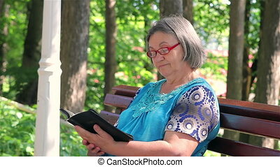 Senior woman reading bible in park - Elderly woman reading...
