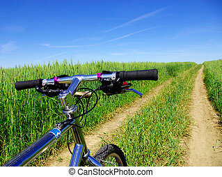 bicycle at sunny day at field
