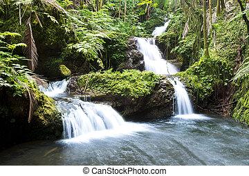 Hawaiin waterfall - Beautiful waterfall in Hawaii fed by...