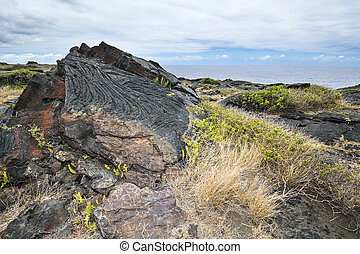 Dried lava flow - An old Hawaiian lava flow shows its age by...