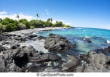 Rocky tropical beach in Hawaii - A beautiful black and white...
