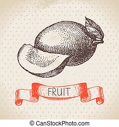 Hand drawn sketch fruit mango Eco food background Vector...