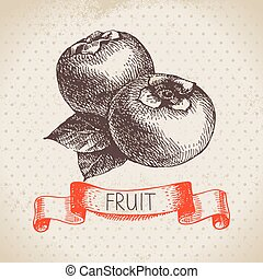 Hand drawn sketch fruit persimmon Eco food background Vector...