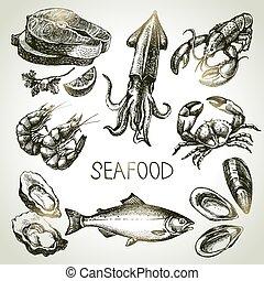 mano, dibujado, Bosquejo, Conjunto, de, seafood., vector,...