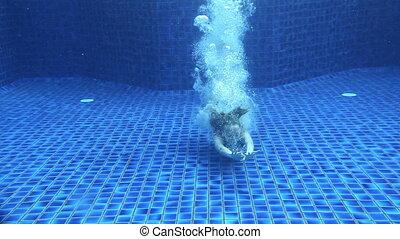 Enjoying Underwater Swimming - Girl swimming underwater in...