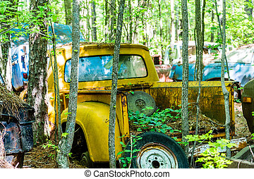 Old Yellow Pickup in Trees - DETROIT, MICHIGAN - May 11,...