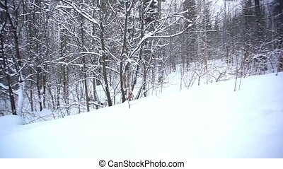 Winter landscape in mountains with snow and snow covered...