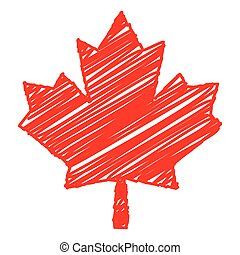 maple leaf - pencil drawn maple leaf vector