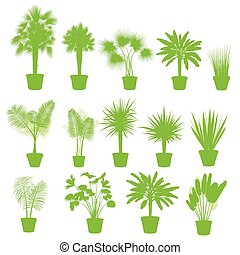 House indoor plants in pots set  background green concept