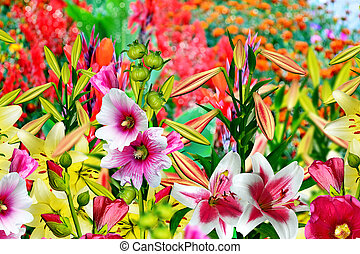 Summer landscape Lily flowers