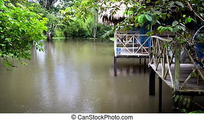 Jungle Lodge in Rain - Flooded jungle lodge on stilts in the...