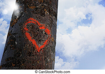 heart shape contour painted with red paint on tree log in...