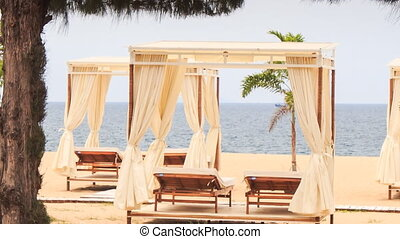 view of beach sunbeds under tents near palm tree against sea...