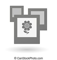Isolated group of photos with a flower