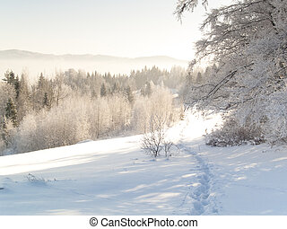 Foot path - winter - Winter time. White snow in mountain....