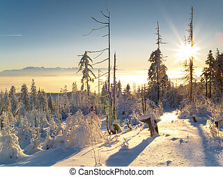 Winter sunset in Polish mountain White snow Winter time