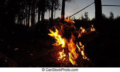 Campfire wide shot in summer evening outdoor in forest