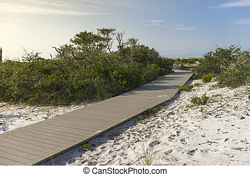 Early Morning Boardwalk Path to the - Plank boardwalk...
