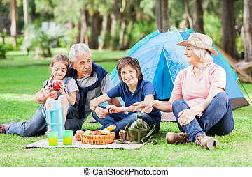 Multi Generation Family Camping In Park - Happy multi...