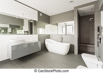 White exclusive washroom - White and grey exclusive big...