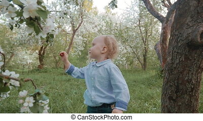 Now he knows how blooming apple-tree smells - Slow motion...