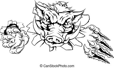 Boar claw breakthrough concept illustration of a boar mascot...