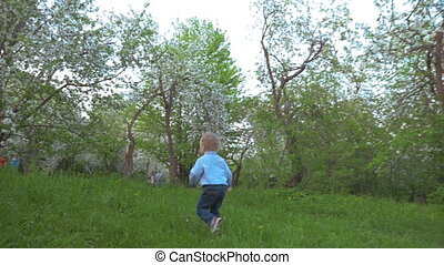 Boy Walking in the Garden - Steadicam slow motion shot of a...