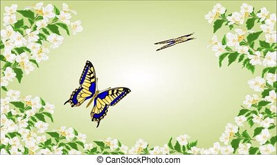 Swallowtail Inachis iobutterflies - Animation of...