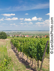 Lake Neusiedler See,Burgenland,Austria - Moerbisch at Lake...
